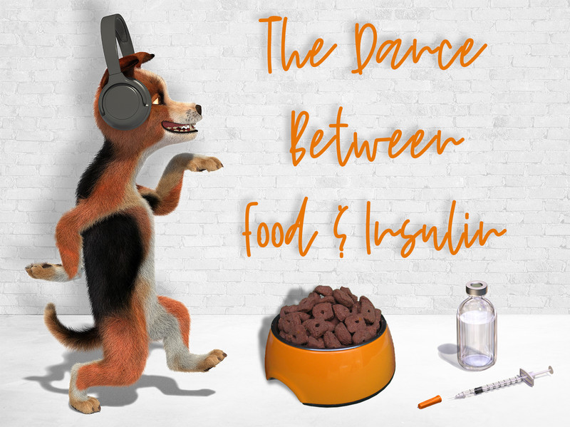 The Dance Between Food and Insulin