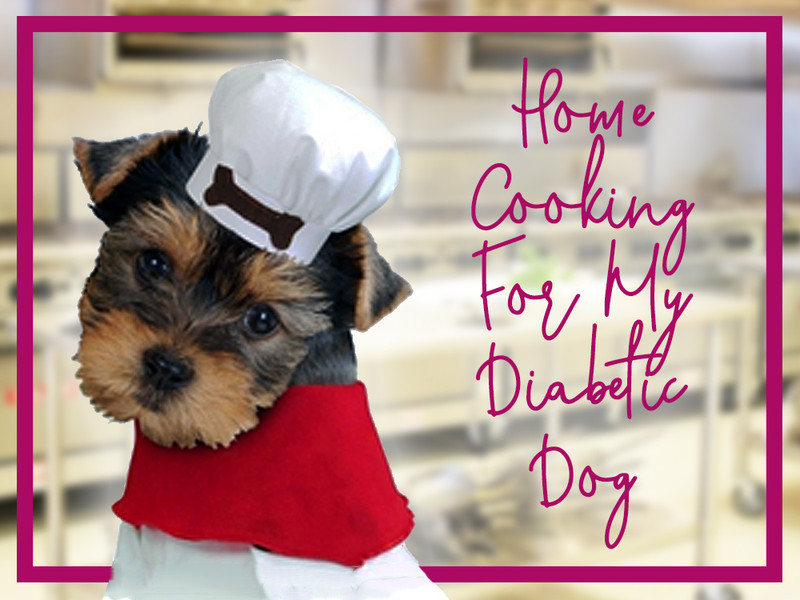 Home Cooking For My Diabetic Dog
