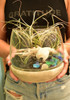 Standing Glass and Cement Terrarium - NEW!