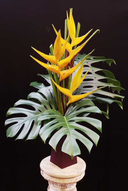 Sophisticated and simple, these extra large Heliconia and Monstera leaves are extremely long lasting (up to a month)