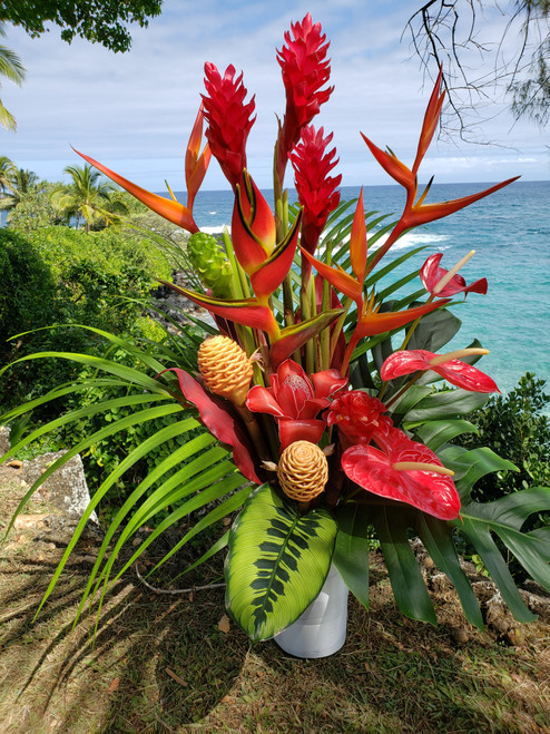 Hana Tropicals-Buy Tropical Flowers| Exotic Flowers from