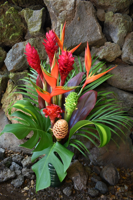 Medium Tropical Arrangement - Sold Out Until 5/12