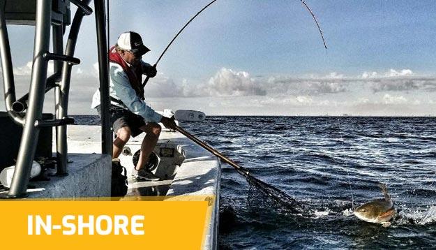In-Shore Hard baits