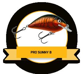 Pro Sunny B