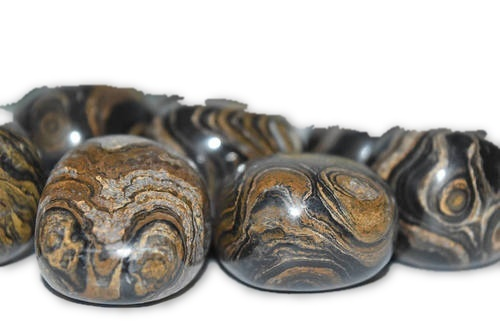Stromatolite Tumbled 1 pc