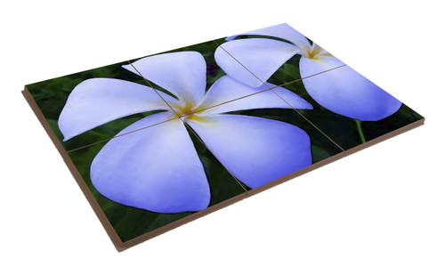 """Blue Plumeria"" 6 in 1 Coaster set"