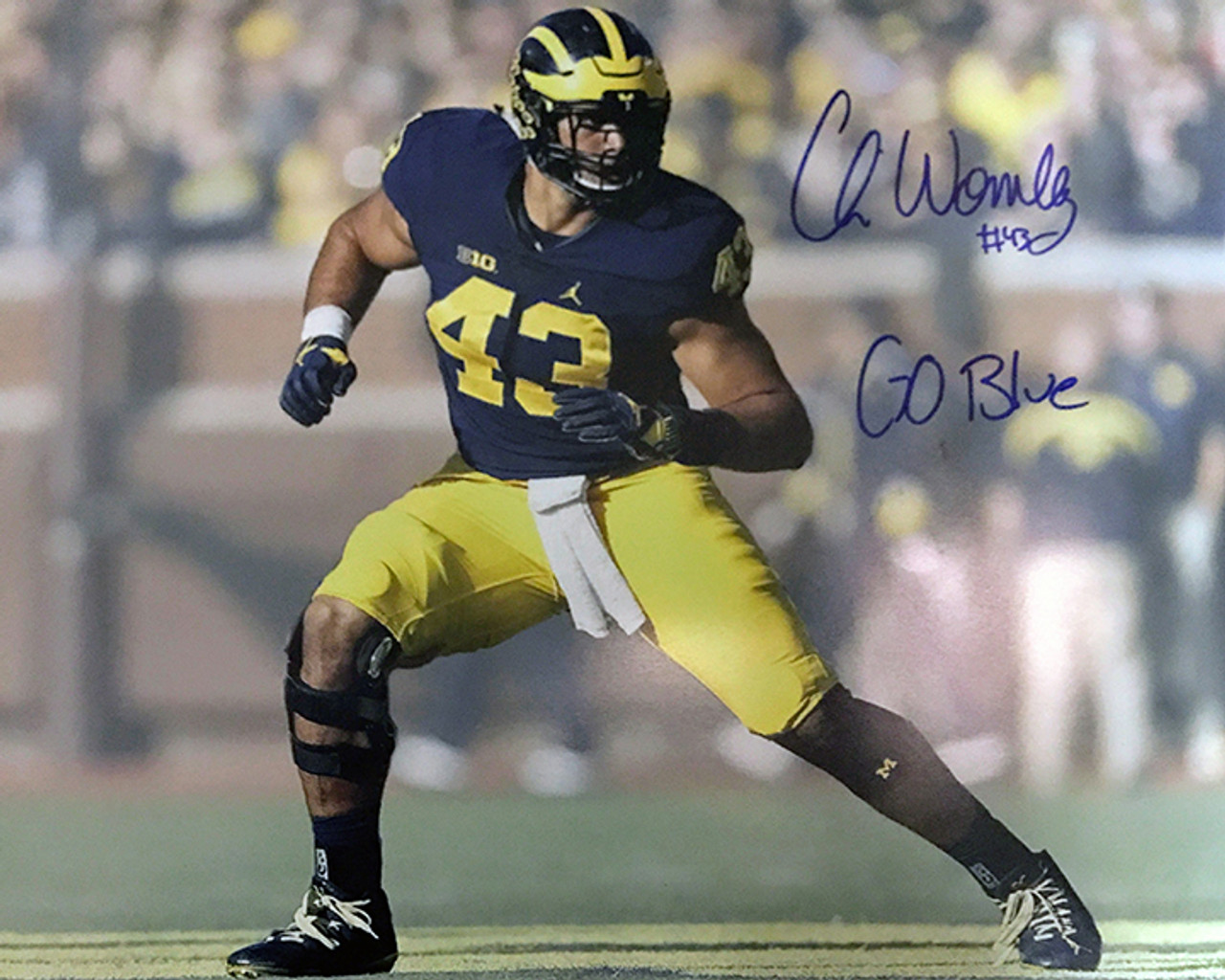 Chris Wormley Michigan Wolverines 16-1 16x20 Autographed Photo - Certified Authentic
