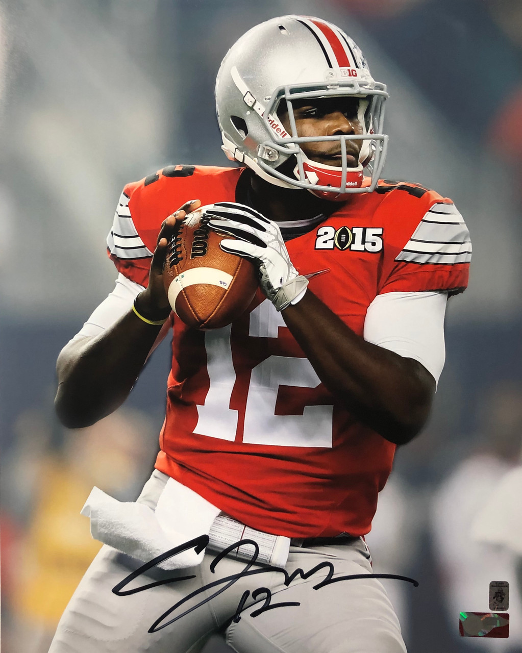 finest selection befba 5225f Cardale Jones Ohio State Buckeyes 16-1 16x20 Autographed Photo - Certified  Authentic