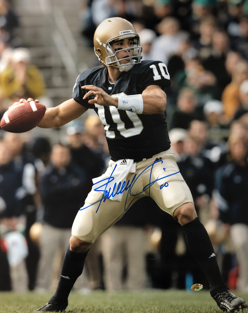 b21ed95bc51 Brady Quinn Notre Dame Fighting Irish 16-3 16x20 Autographed Photo - Certified  Authentic