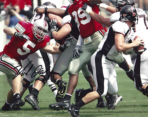 Mike D'Andrea OSU 8-3 8x10 Autographed Photo - Certified Authentic