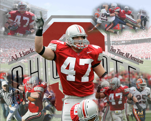AJ Hawk Ohio State Buckeyes Licensed Unsigned Photo (6)