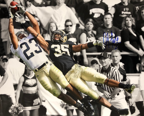 3f1ad2645e3 Golden Tate Notre Dame Fighting Irish 16-1 16x20 Autographed Photo - Certified  Authentic