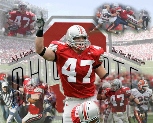 finest selection a78b1 fd358 AJ Hawk Ohio State Buckeyes Licensed Unsigned Photo (6)