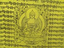 "Medicine Buddha Tibetan Prayer Flags From Nepal (9""x9.5)"