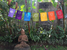 Large Seven Chakra Prayer Flags