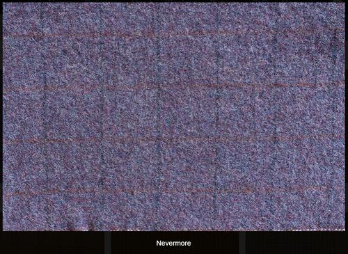 Nevermore Woolen Fabric