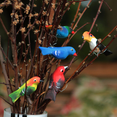 Set of 5 Brazilian Bird Ornaments for Display 'Birds in My Garden'