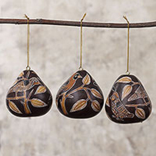 Peruvian Handmade Dried Mate Gourd Bird Ornaments (set of 3) 'Sun Birds'