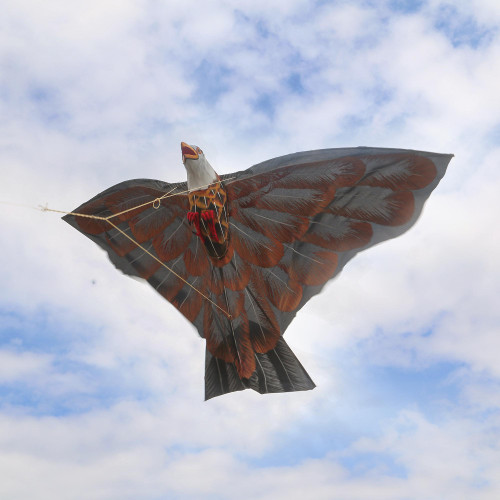 HandPainted Hawk Kite in Brown from Bali 'Soaring Hawk'