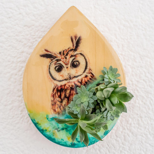 HandPainted OwlThemed Wood WallMounted Planter 'Owl Nature'