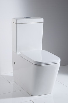 AN5818 Wall Faced Toilet