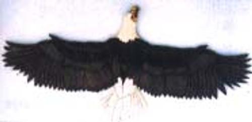EAGLE3 INTARSIA PATTERN