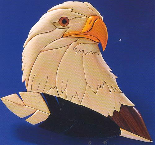 EAGLES GAZE INTARSIA PATTERN
