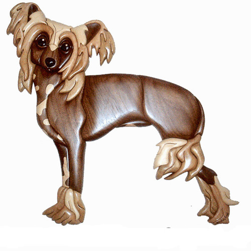 CHINESE CRESTED STANDING Intarsia Pattern