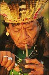 Guarani Mate Drinker