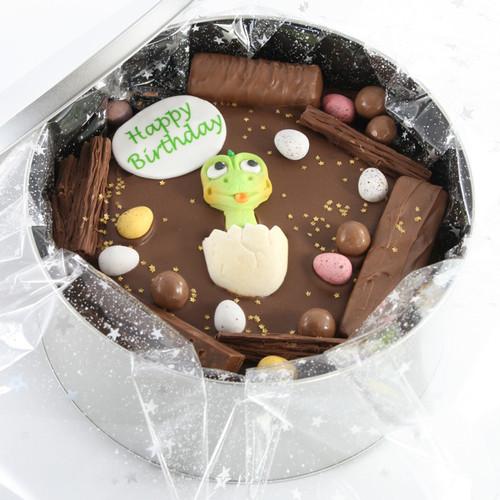 Dinosaur Birthday Cake In-a-Tin