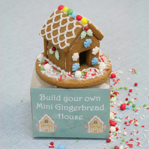 9 Gingerbread House Craft Kits