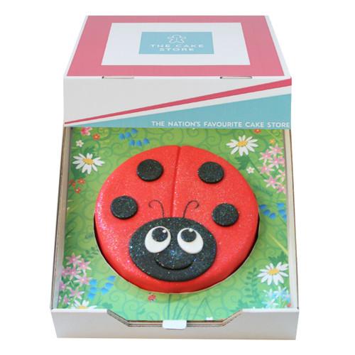Ladybird Gift Cake