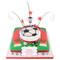 Football Team Birthday Two~Tier Cake