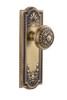 Grandeur Parthenon Plate Double Dummy with Windsor Knob in Vintage Brass (GD-800851)
