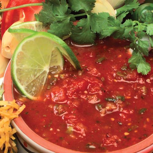 Salsa Dip Mix