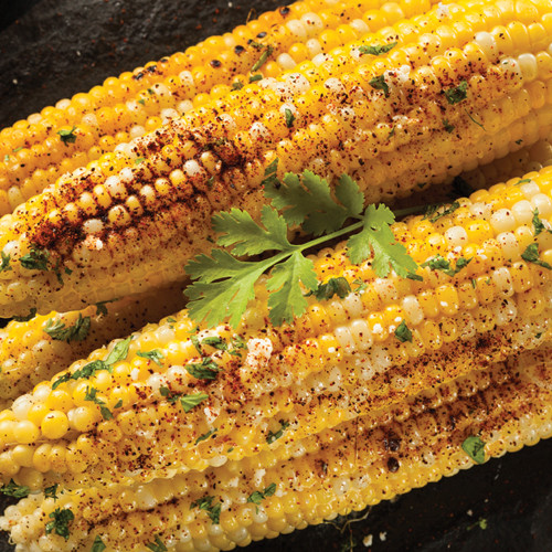 South of the Border Corn on the Cob