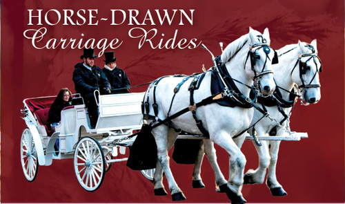 Horse-Drawn Carriage Ride - TEST