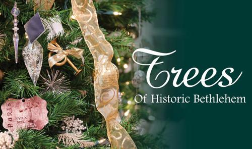 Trees of Historic Bethlehem - TEST