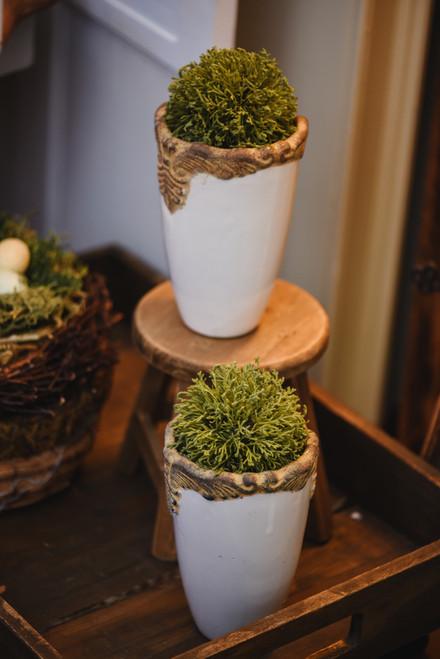 Cream Ceramic Vases