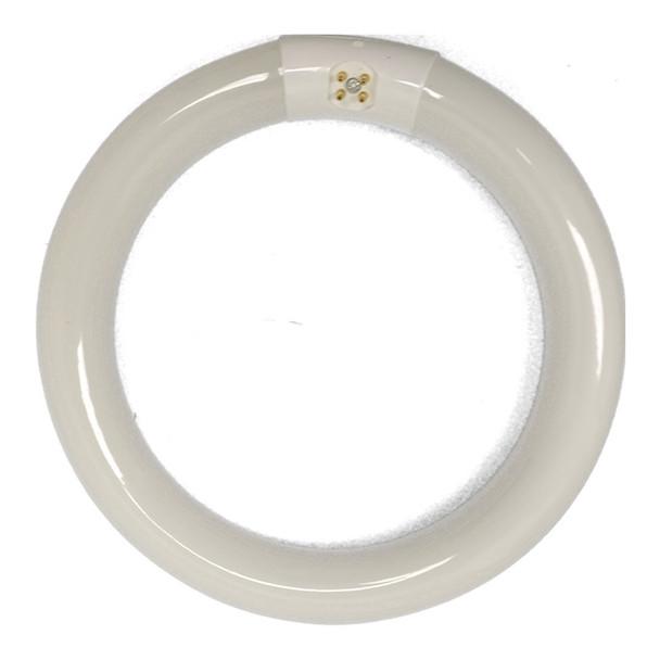 Wilbur Curtis CA-1123 30W Circular Lamp