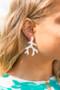 Coral - Acrylic Earrings