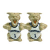University of Kentucky Wildcat Salt & Pepper Shakers