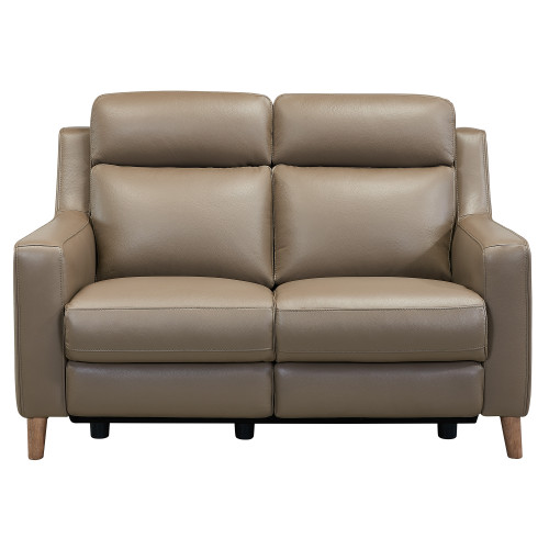Wisteria Contemporary Loveseat in Light Brown Wood Finish and Taupe Genuine Leather