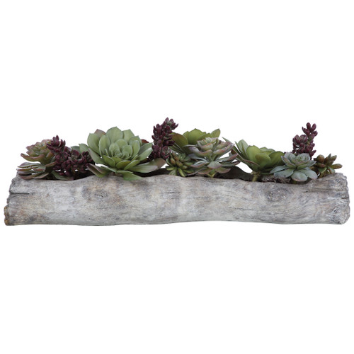 Uttermost Charita Lush Succulents