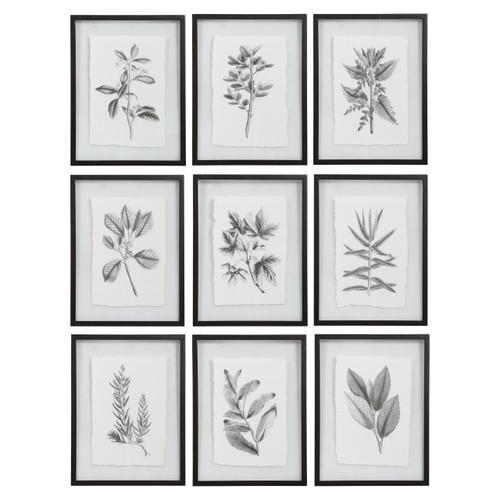 Uttermost Farmhouse Florals Framed Prints, S/9