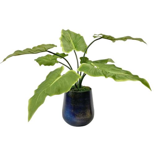 Uttermost Mari Calla Accent Plant