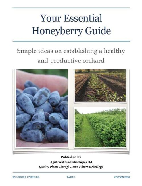 honeyberry-guide.jpg