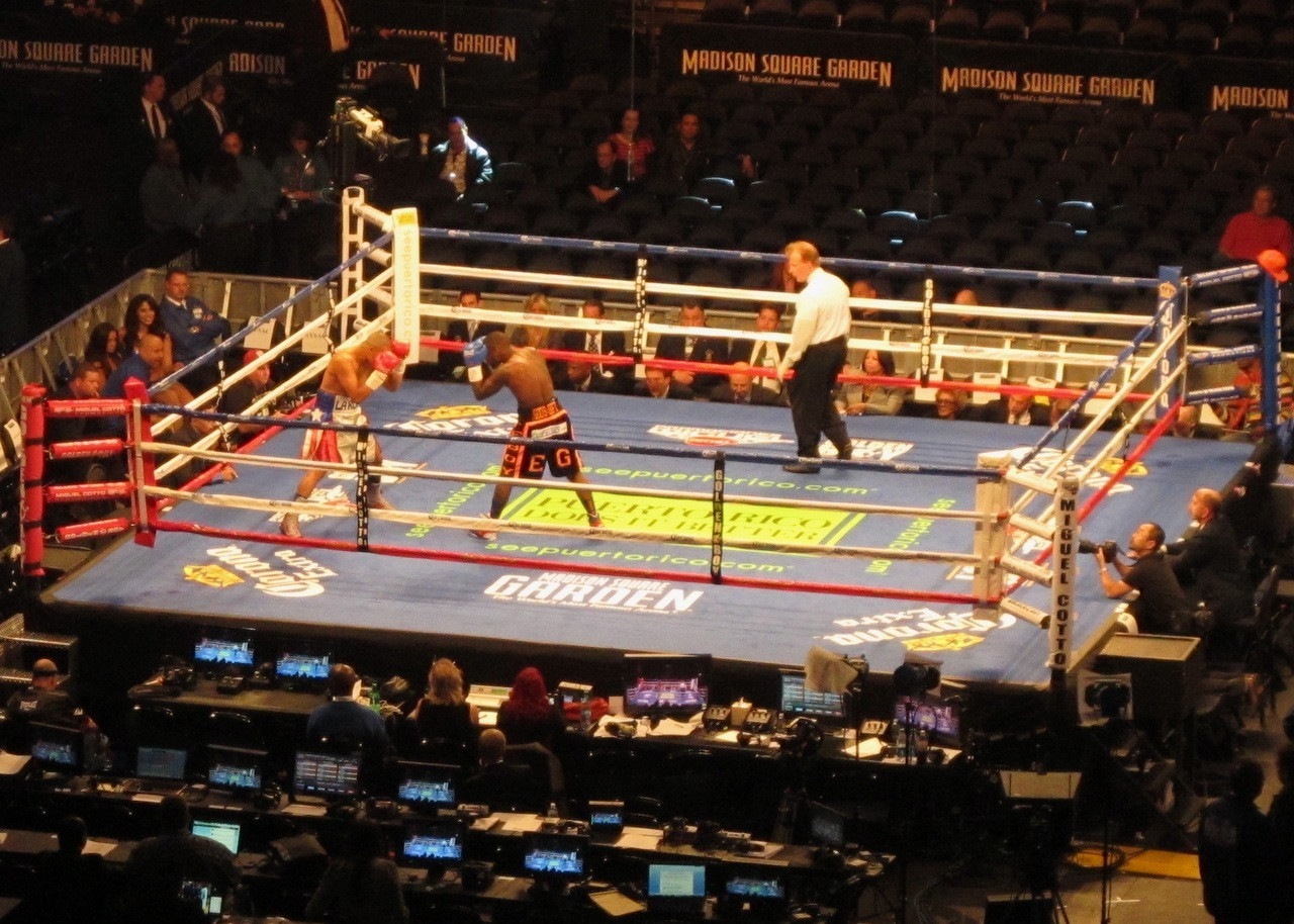 PROFESSIONAL BOXING RING RENTAL - PRO FIGHT SHOP®