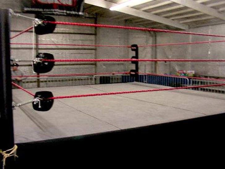 Pro Wrestling Ring