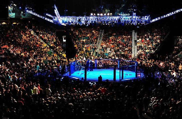 Pro MMA Cage